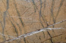 Rain forest gold grey marble