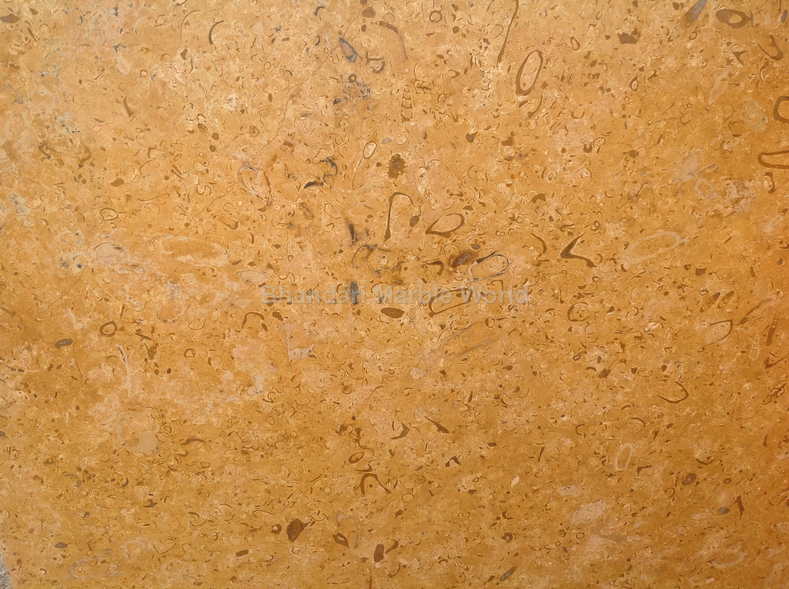 Indian Marble Indian Marble Manufacturer Amp Supplier In India