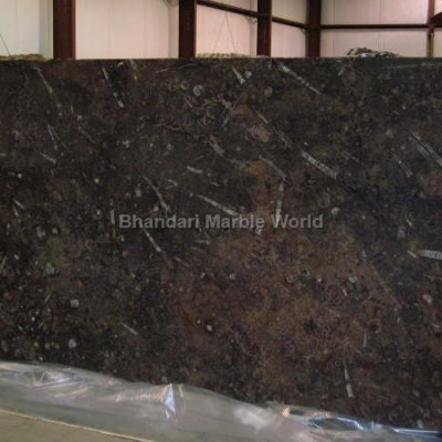 broen fossil marble